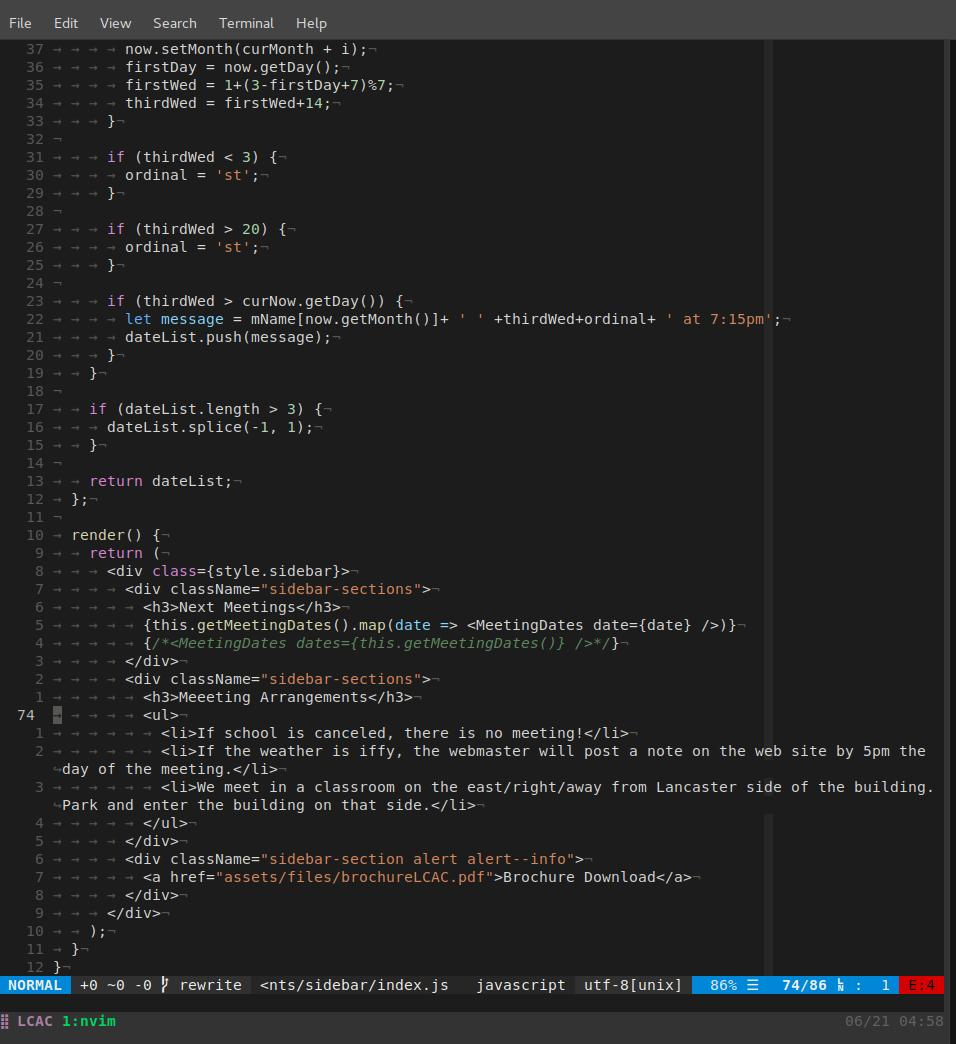 Image of how my Neovim looks like